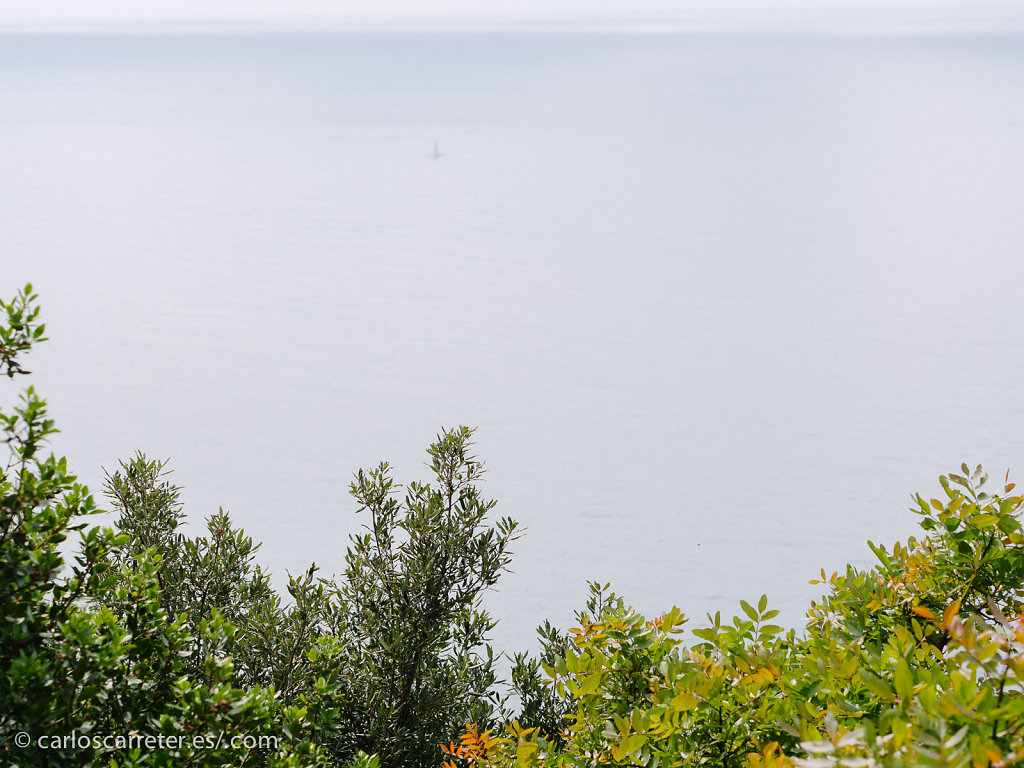 Entre Monterosso y Vernazza