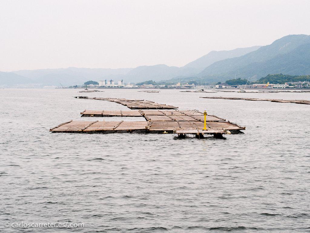 En el transbordador de Miyajima