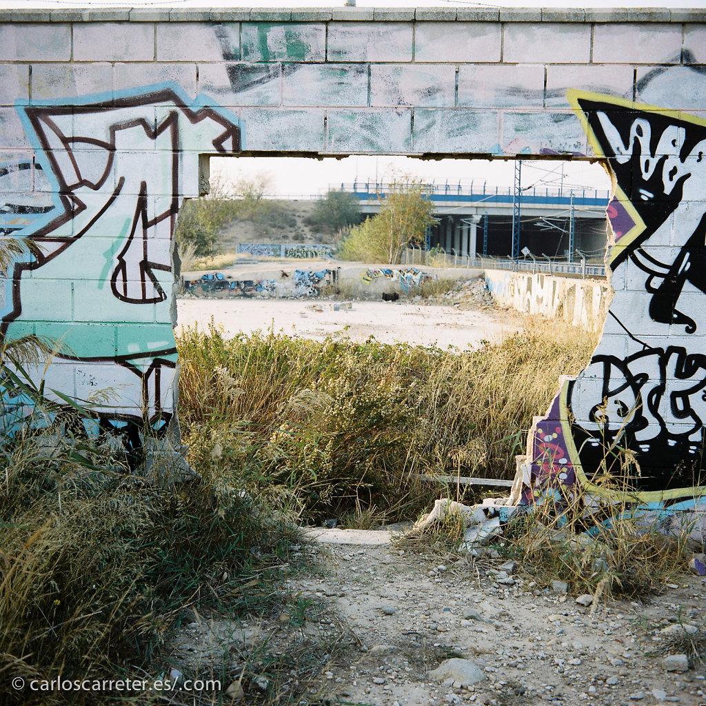 20141124-CarlosCarreter-19.jpg