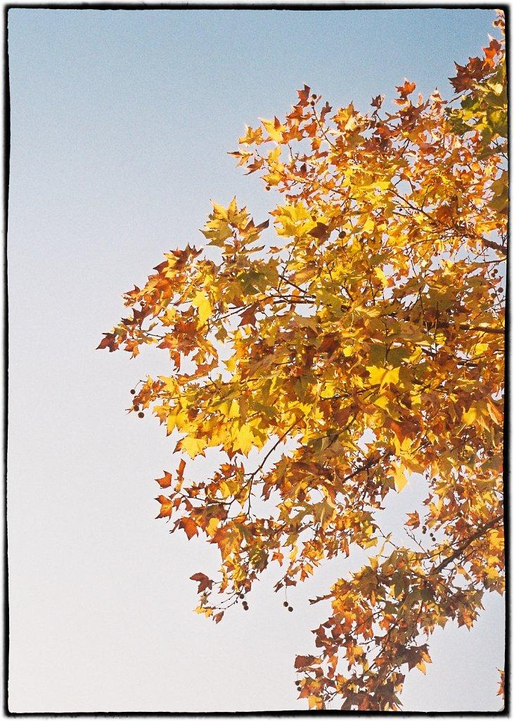 20171226-Kodak-Portra-400-3-2.jpg